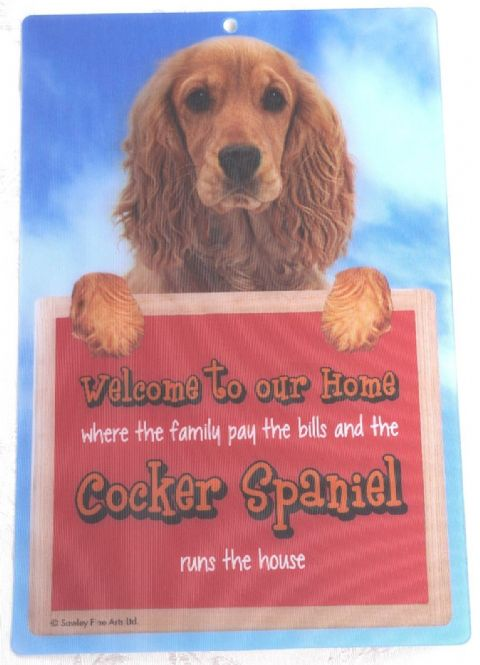 COCKER SPANIEL 3D GOLD WELCOME SIGN STUNNING EYE CATCHING 23CM X 15CM DOG SIGN